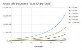 While employed at purdue, you are covered by term life insurance. Nhm6jc1fte5enm