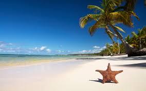 Image result for 세계에서 가장 아름다운 바다