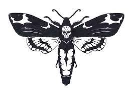Smrtihlav 1 Návrhy Tetování Ornamenty Kresbičky Galleries
