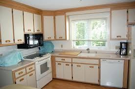 Merillat Replacement Cabinet Doors Door Replacements Luxury Kitchen Decorating