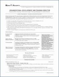 Investment Banking Resume Template New Investment Bank Resume Enchanting Investment Banking Resume