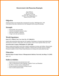 Sample Resume Government Jobs How To Write An Apa Essay Type My Essay For Me Resume Federal 89