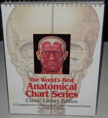 World S Best Anatomical Charts Details About The Worlds Best Anatomical Chart Series A Comprehensive Collection Of 48 Charts