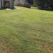1 memphis tn lawn care service lawn