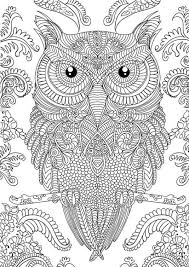Image Result For Free Adult Online Coloring Of Owls Concept Art
