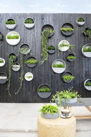 hanging wall planter hanging planter