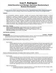 Federal Resume Writing Service Beauteous Excellent Ideas For Creating Cost For Resume Writing Service