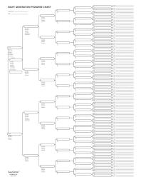 Easygenie 10 Blank Pedigree Charts 8 Generations 256 Names Per Sheet