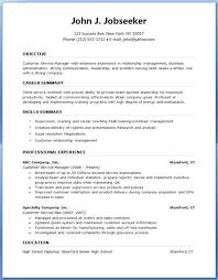 Bad Resume Examples Pdf New Sample Curriculum Vitae English Pdf ...