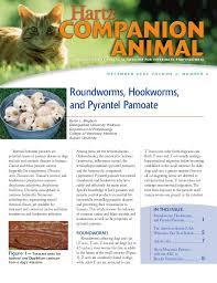 Hartz Companion Animal Roundworms Hookworms And Pyrantel