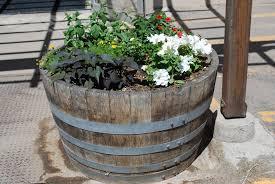 wine barrel planter half wine barrels