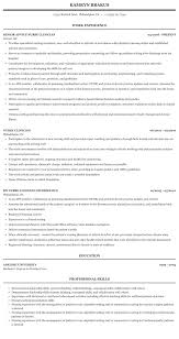 Utilization Review Nurse Resume Nurse Clinician Resume Sample Mintresume
