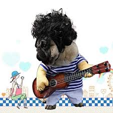 Luckstar Funny Crazy Guitarist Style Costume <b>Clothes</b> for <b>Pet Dog</b> ...