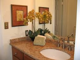 Bathroom Staging Organizing Services Offered By Transforming Spaces In Moneta