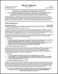 best resume for it position good objectives to put on resumes