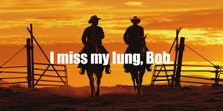 california anti smoking campaign in the late 90s parodied the california anti smoking campaign in the late 90s parodied the marlboro man advertisements of years