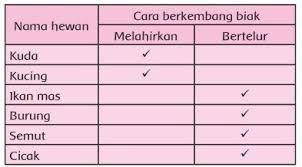 We did not find results for: Kunci Jawaban Tema 1 Kelas 3 Pembelajaran 2 Subtema 1 Ciri Ciri Makhluk Hidup