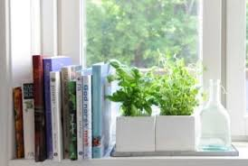 Appalling Window Sill Or Windowsill A Diy Ideas Decoration ...