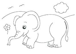elephant color. Brilliant Elephant Baby Elephant Coloring Page Pages To Print  Cute In Elephant Color E