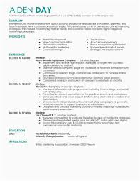 Media Resume Examples Digital Marketing Resume Media Resume Examples Examples Of Resumes 59