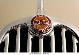 jaguar xk140 badge stock photos jaguar xk140 badge stock images 1955 jaguar xk140 stock image