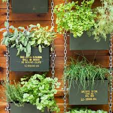 how to plant a garden. How To Plant A Vertical Garden W