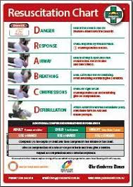 Resuscitation Chart Pdf First Aid Updates Rikkis Scouting Resources