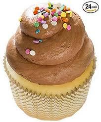 Amazoncom Chocolate Birthday Vanilla Cake Mini Cupcakes