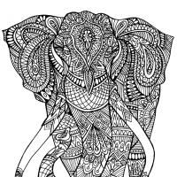 Small Picture Hard Coloring Pages Elephant Coloring Pages