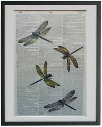 image is loading dragonflies print no 172 dragonfly gifts dictionary wall