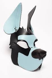 retriever puppy mask blue