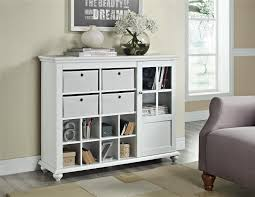 Living Room Storage Cabinets With Doors Ameriwood Furniture Altra Furniture Reese Park Storage Cabinet