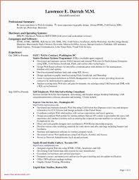 Resume Profile Header Examples 10 Graphic Designer Profile Summary Example Resume Letter