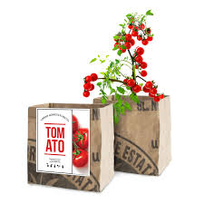 additional images tomato vegetable garden grow kit