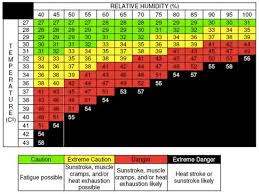 Heat Stress Are You At Risk Opal