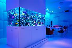 fish tank stand design ideas office aquarium. Accessories:Fascinating Modern Fish Tank Stand Contemporary Ideas Cabinet Ornaments Tanks Design Uk Australia For Office Aquarium U