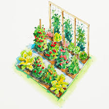 Small Picture All American Vegetable Garden Plan