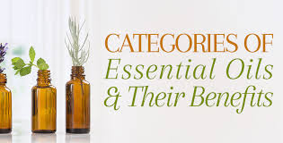 Essential Oil Benefits Chart Categories Of Essential Oils Their Benefits Families Notes