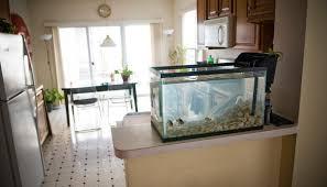 largej countertop fish tank introduction aquarium coffee tablea