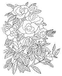 Tante Rose Da Colorare Per I Bambini Disegni Da Colorare E