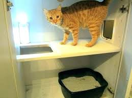 litter box furniture cat enclosed covered. Hidden Kitty Litter Box Enclosed Furniture Cat White Bench . Covered
