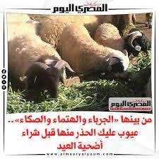 دعاء ذبح الخروف في عيد الاضحى