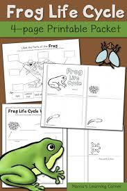 Frog Life Cycle Worksheets - Mamas Learning Corner