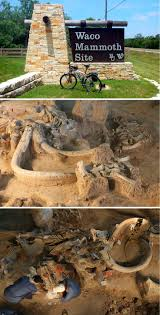 best images about waco baylor s hometown fixer if you ve never ed the waco mammoth site it s a must