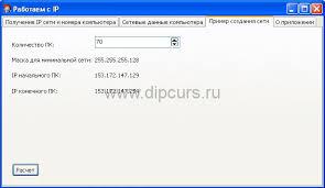 Курсовая работа Компьютерные сети cbuilder ip адреса dipcurs Курсовая компьютерные сети расчет диапазона ip адресов для определенного числа компьютеров