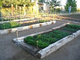 raised garden bed using railroad ties raised beds out of railroad ties this looks just like