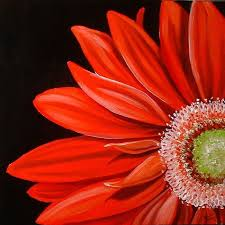 close up gerbera daisy deep burnt orange could do a modern approach with black as