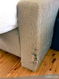 Search Results cat scratching post