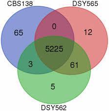 Venn Diagram Bioinformatics Comparative Genomics Of Two Sequential Candida Glabrata Clinical