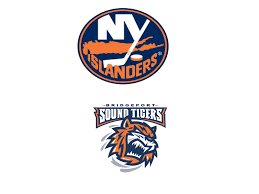 Islanders Depth Chart New York Islanders Depth Chart Syko About Goalies